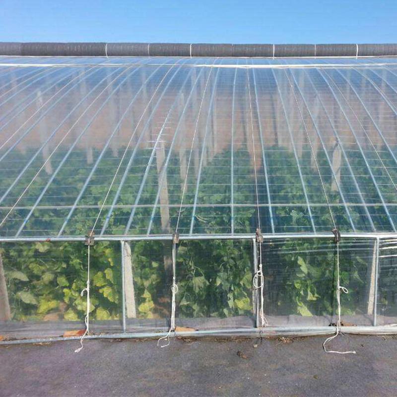 Greenhouse film